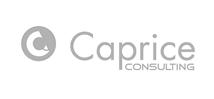 Caprice Consulting logo